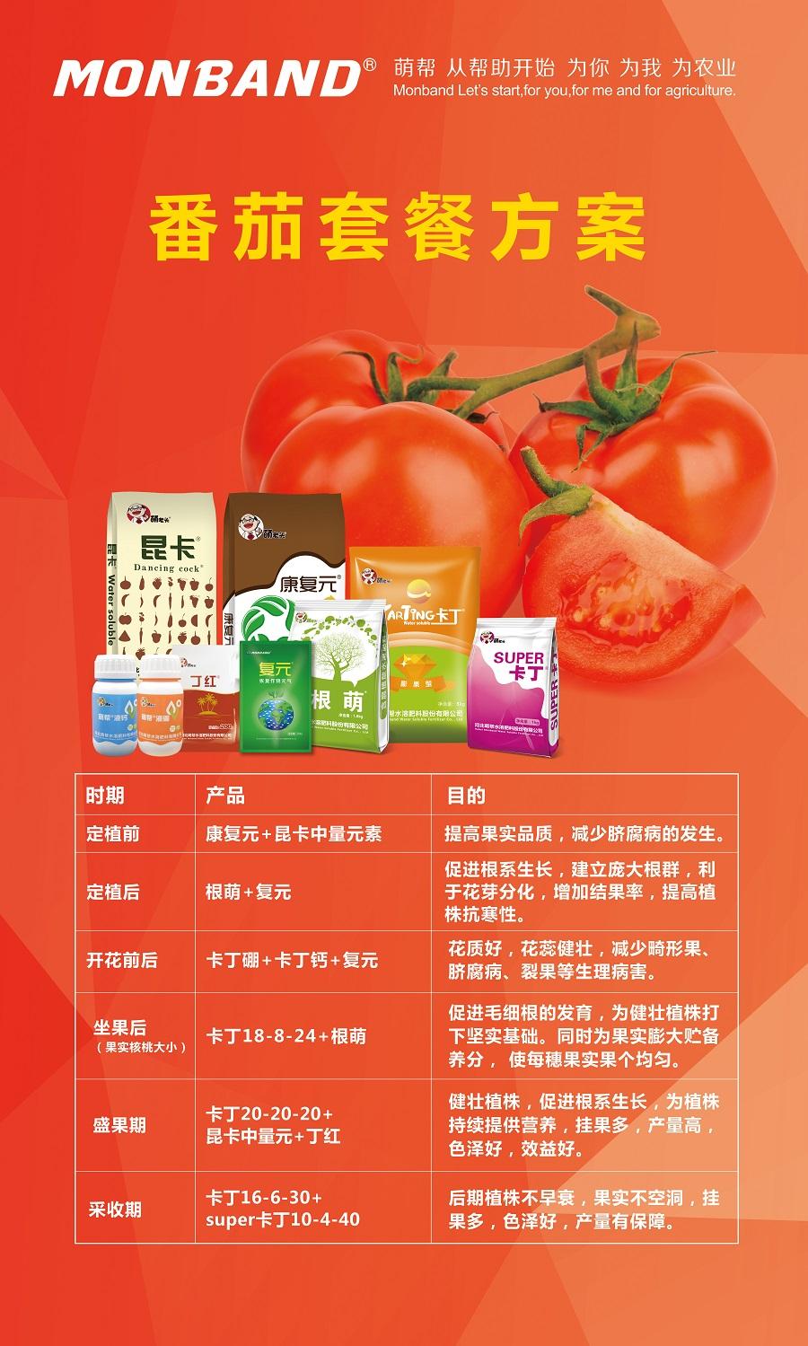 番茄营养方案